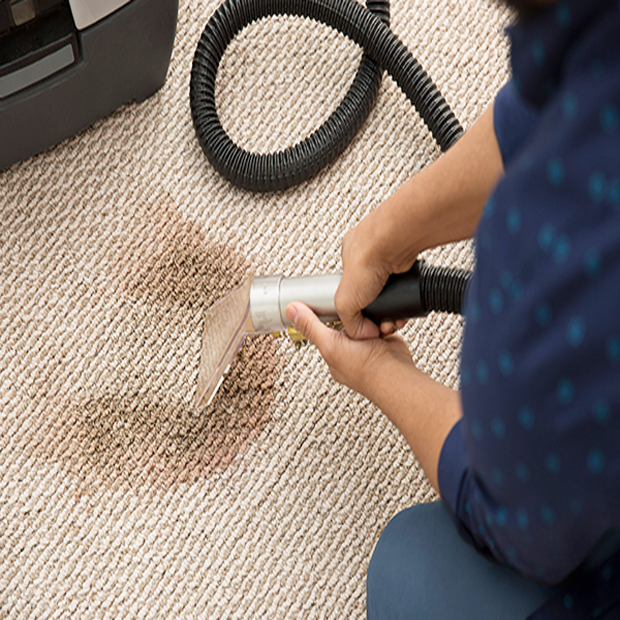 Carpet Cleaning 4